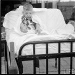 Terapia con animales en un hospital en 1956