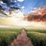 7 Formas de mantener la paz en los momentos difíciles