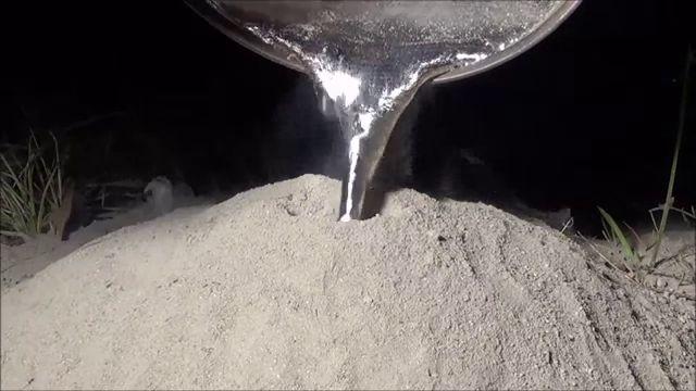 hormiguero aluminio (4)