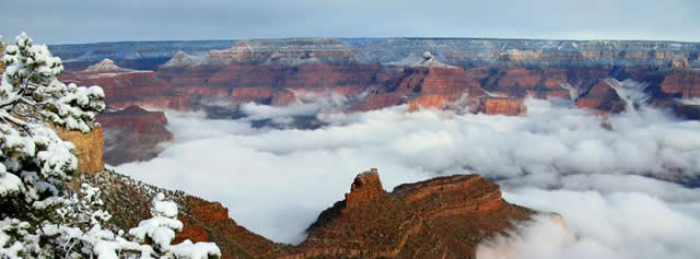 Niebla Gran Cañon Arizona (6)