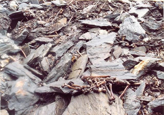 Lago esqueletos Roopkund (2)