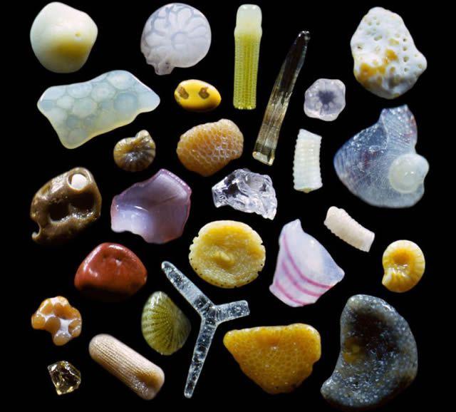 Granos de arena microscopio Gary Greenberg (2)