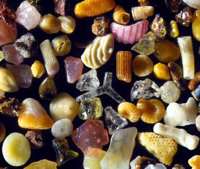 Granos de arena microscopio Gary Greenberg (9)