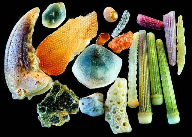 Granos de arena microscopio Gary Greenberg (4)