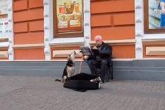 perro cantante