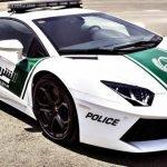 Los superautos patrullas de Dubái