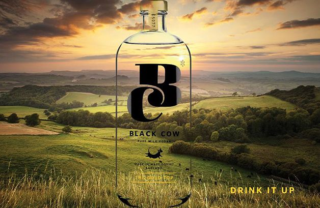 Black Cow Vodka (2)