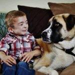 Owen y Haatchi, la conmovedora historia de un niño y su perro