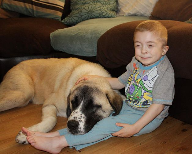Owen y Haatchi (10)