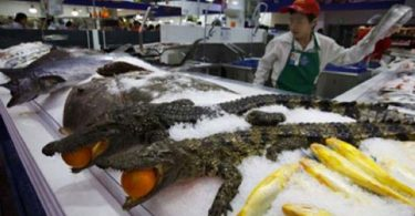 Walmart China (3)