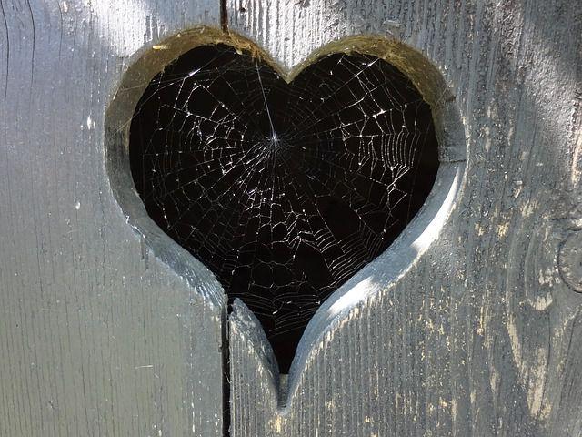 datos sobre el amor (21)