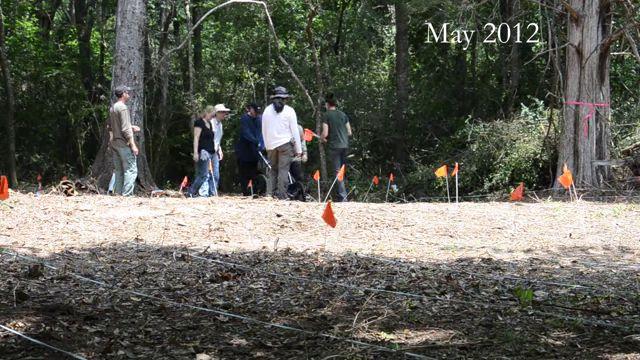 excavaciones Arthur G. Dozier