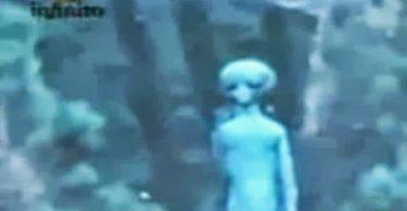 extraterrestre en peña de lobos