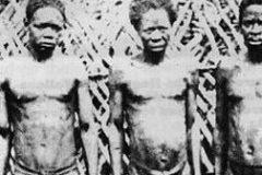 tribu Bubal