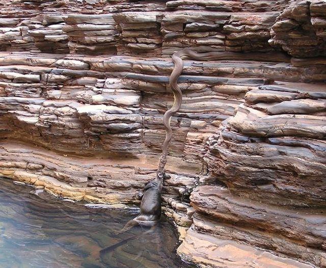 Naturaleza Extrema Australia (3)