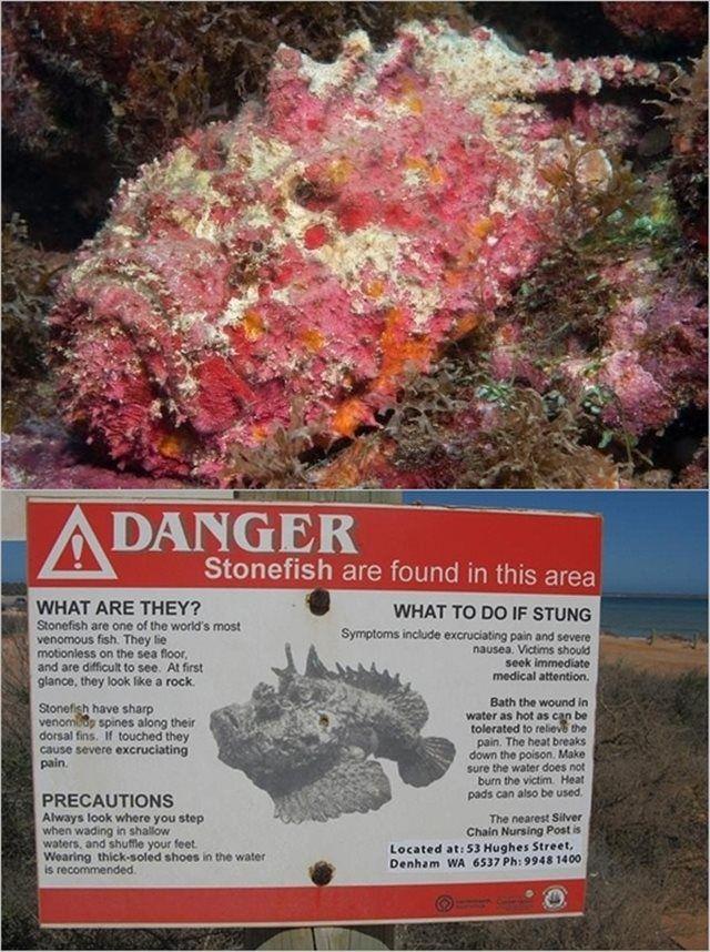 Naturaleza Extrema Australia (7)