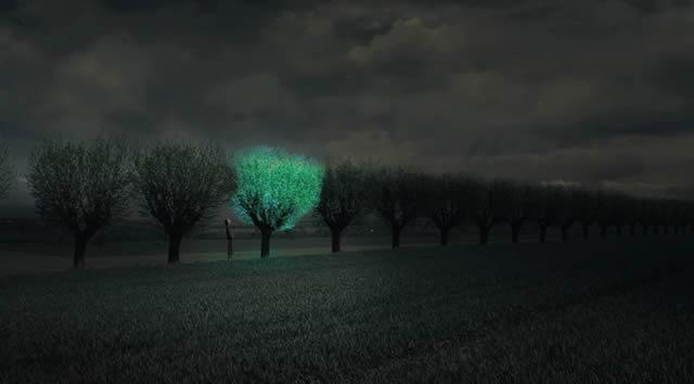 Árboles Bioluminiscentes