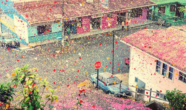 Lluvia de flores en Costa Rica - Sony (8)