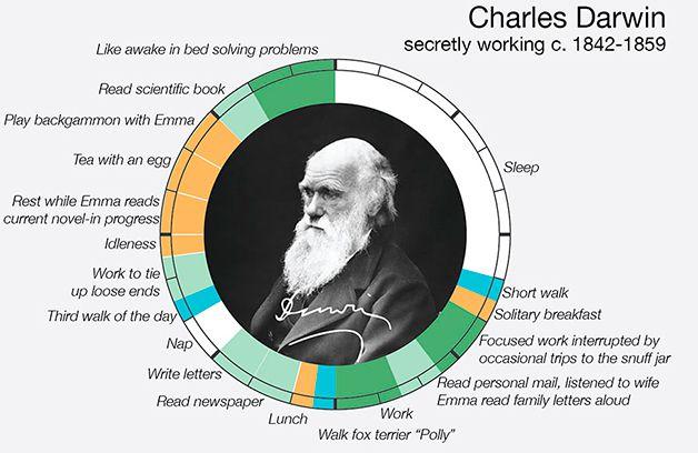 Infografía Rutina de los Cretivos (7)