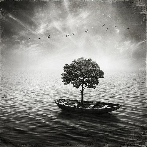 barco deriva