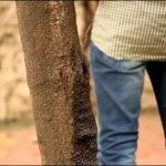 India reacciona contra las personas que orinan en la vía pública