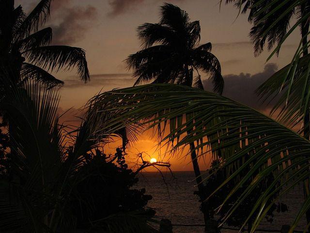 paisaje caribe