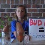 """Niña hace experimento sobre alimentos orgánicos y el """"bud nip"""""""