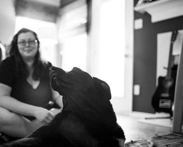 Perro Duke fotografias de Robyn Arouty (5)