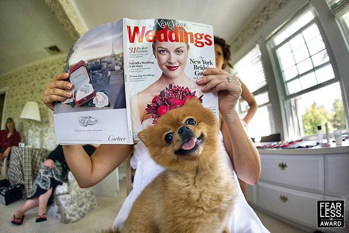 Emin Kuliyev fotografías de boda (10)