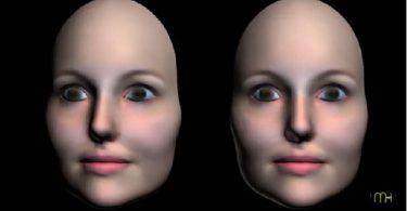 ilusión de la máscara hueca