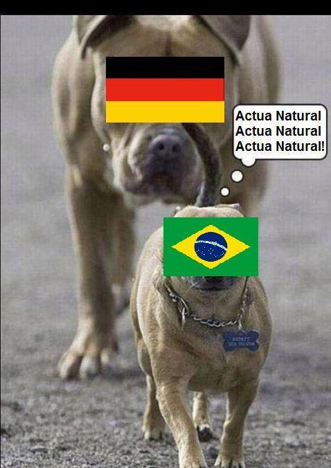 memes alemania brasil (14)