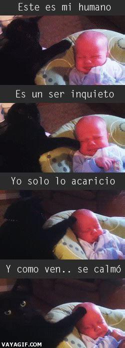Marcianadas_140_08081400 (21)