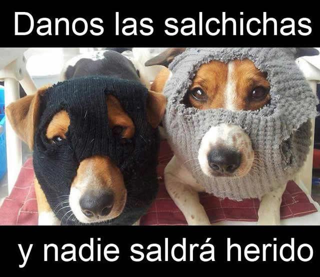 Marcianadas_141_15ago14 (159)