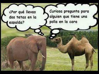 Marcianadas_141_15ago14 (171)