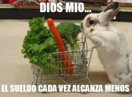 Marcianadas_141_15ago14 (29)