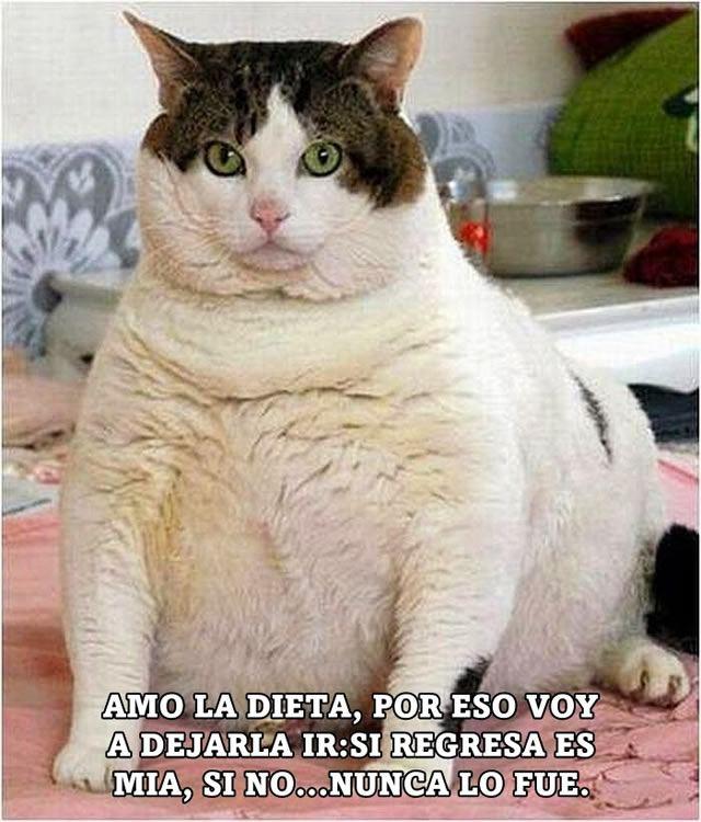 Marcianadas_142_22ago14 (153)