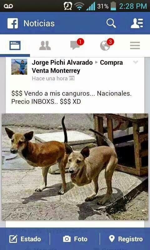 Marcianadas_142_22ago14 (206)