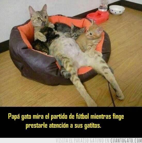 Marcianadas_143_2908141141 (79)