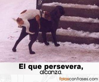Marcianadas_143_2908141141 (93)
