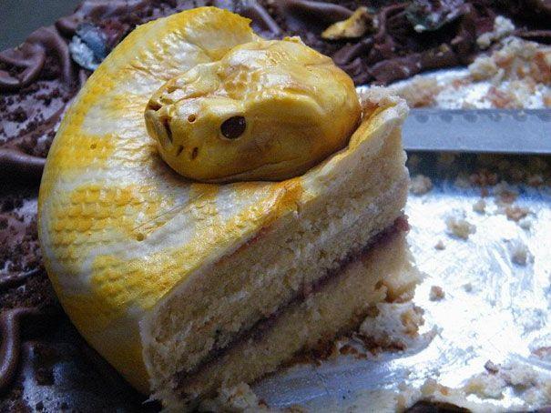 arte culinaria repugnante (15)