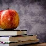 escuela libros manzana