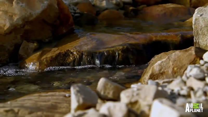 Piscina La Montaña en Springville (2)