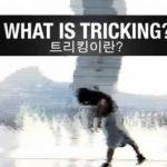 Tricking, modalidad radical de artes marciales