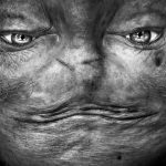Alienación: retratos al revés por Anelia Loubser