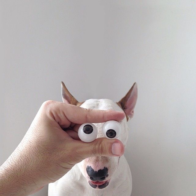Jimmy-Choo-ojos