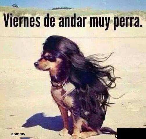 Marcianadas_145_1209141250 (69)