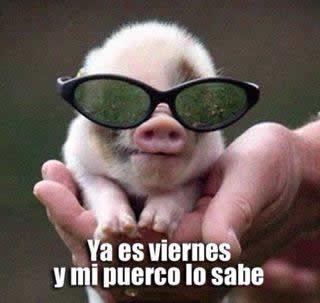 Marcianadas_147_26set14 (210)