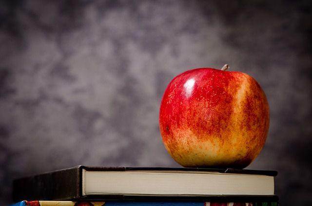 educación_manzana
