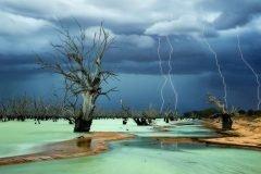 Fotografías naturaleza extrema (30)