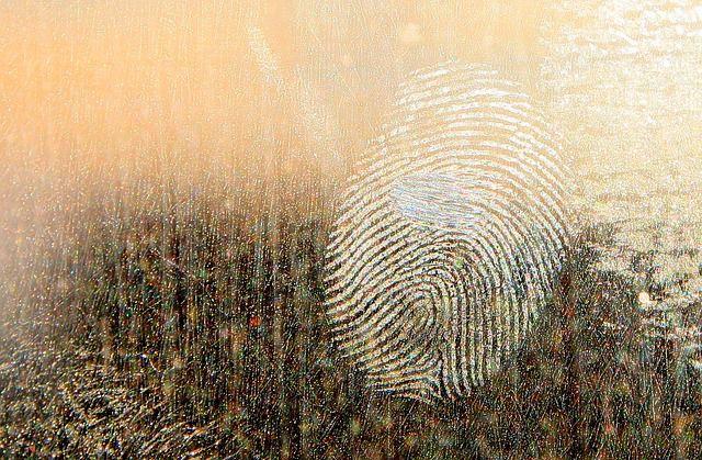huella digital o dactilar